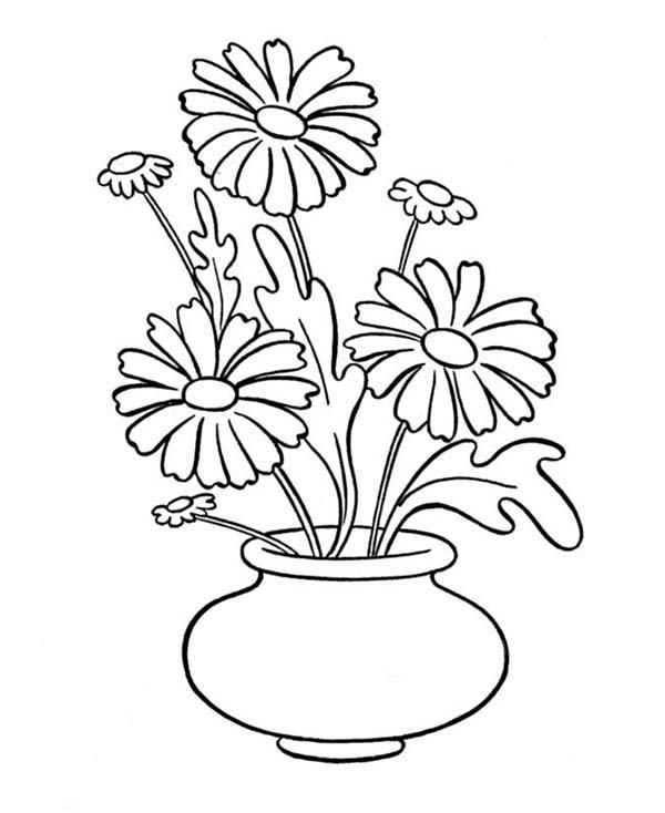 Drawn vase color En planta vases dessin maceta