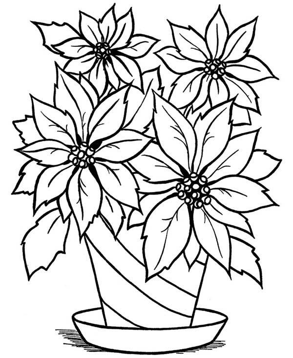 Drawn vase full flower Blooming Coloring Vase in Coloring