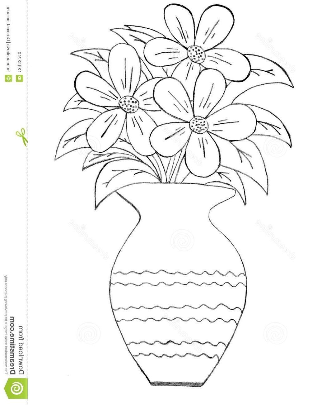 Drawn vase pencil drawing Flowers Of vase At Art