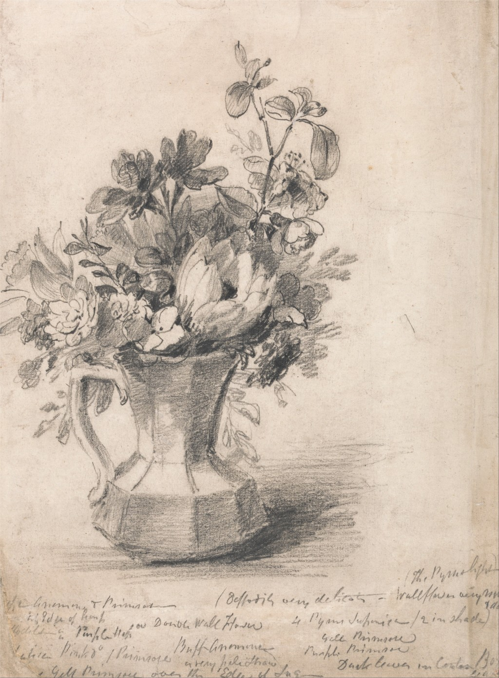 Drawn vase real flower How a Still HubPages Vase