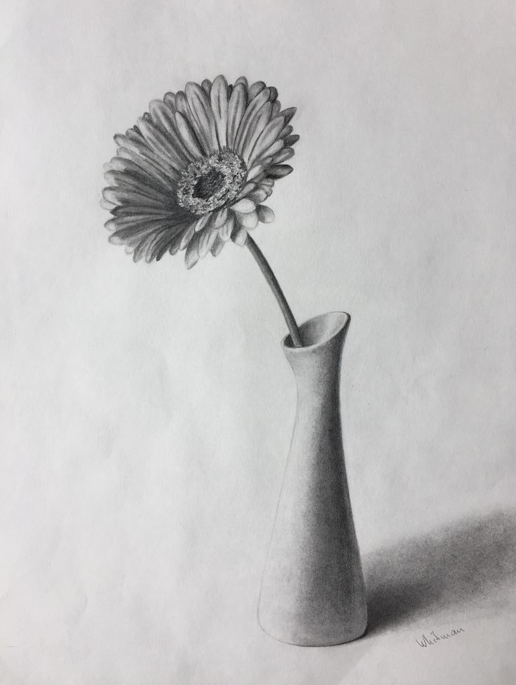 Drawn vase realistic Art images Original vase pencil