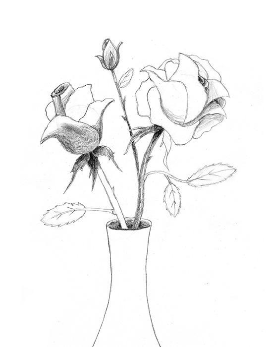 Drawn vase rose A Step Shading 5 How