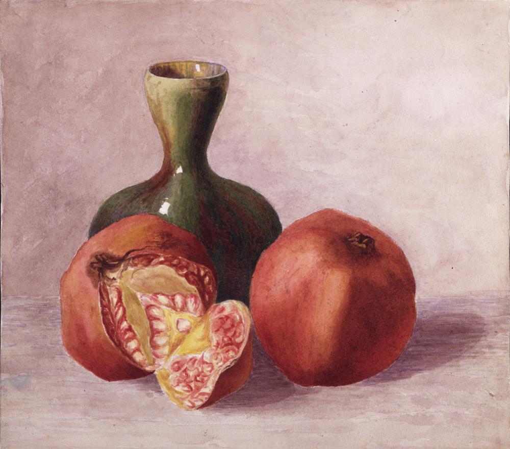 Drawn vase still life Life Still and Potter vase