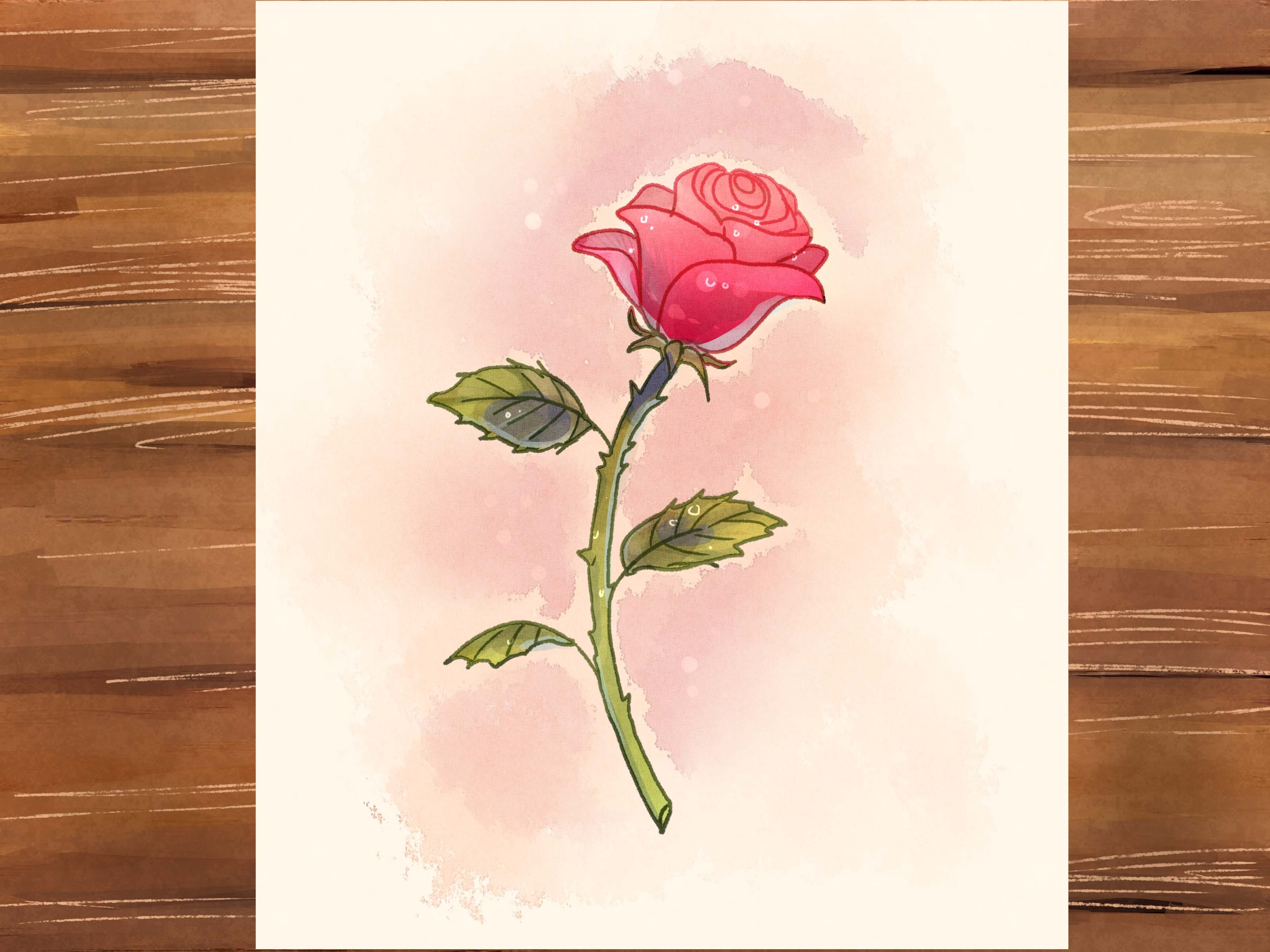 Drawn red rose rosa  Easy Rose Draw a