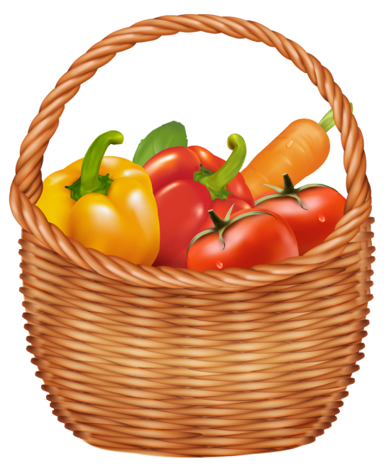 Drawn vegetable realistic Vegetable basket cartoon info drawn