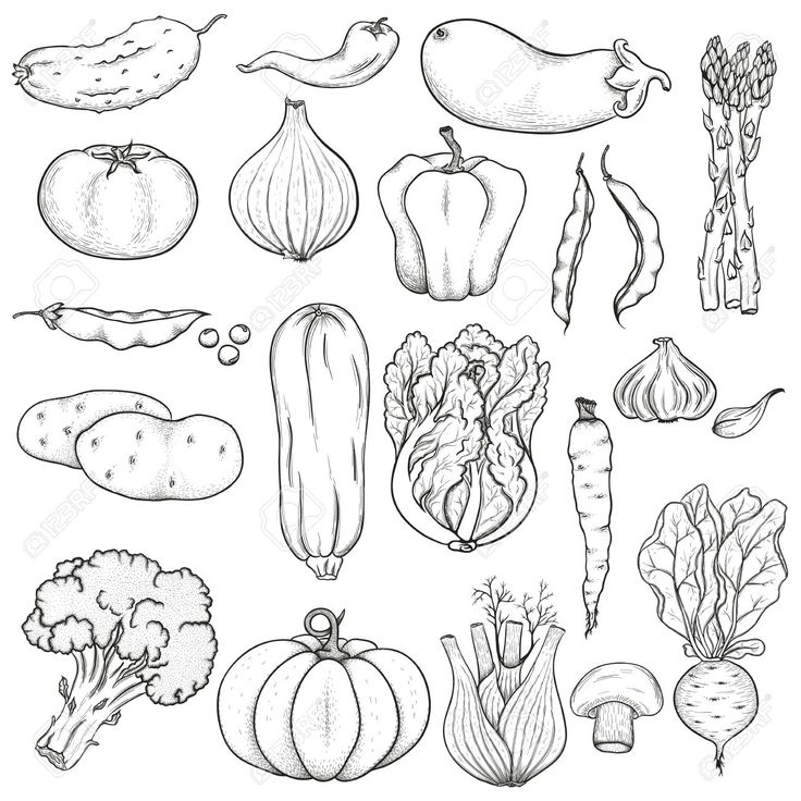 Drawn vegetable black and white Tattoo 2 white images about