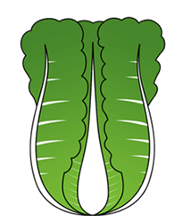 Drawn vegetable cartoon Vegetables How Vegetables to Draw