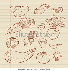 Drawn vegetable easy Drawing Hand Google : stock