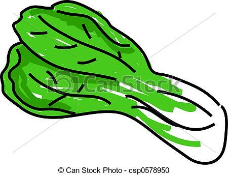 Drawn vegetable line art Illustration isolated of pak pak