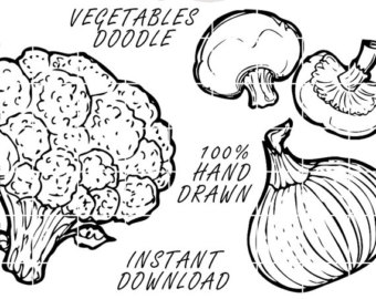 Drawn vegetables fruit and vegetable Cooking Doodle Clip Vegetables 19