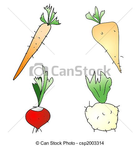 Roots clipart art Vegetables Isolated Illustration Vegetables csp2003314