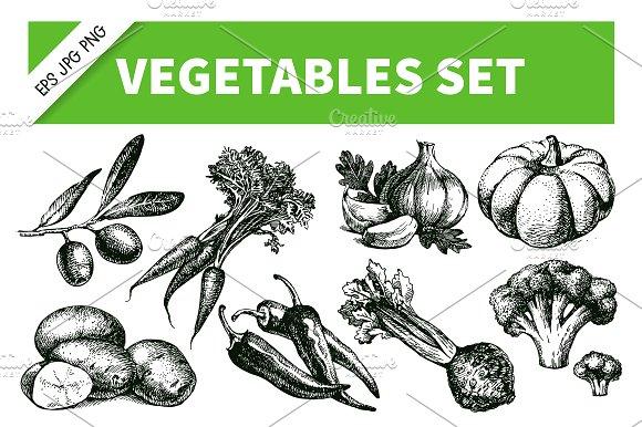 Drawn vegetable sketched Illustrations Sketch Drawn Set on