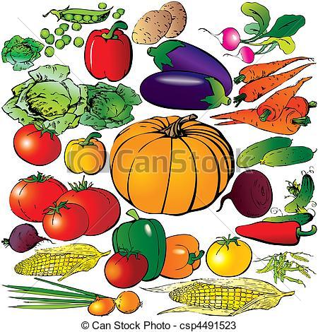 Drawn vegetable veggie Vegetables Vegetables of a on