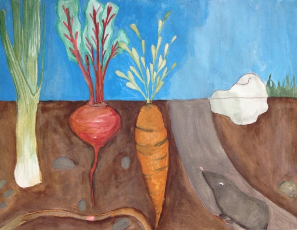 Drawn vegetables root vegetable Root Tes Teach Vegetable Drawing
