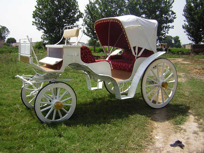 Drawn vehicle classic car Carriage wedding horese wedding white