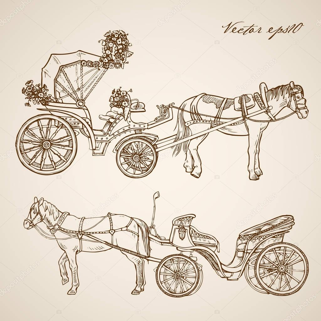 Drawn vehicle doodle Horse drawn carriage doodle collage