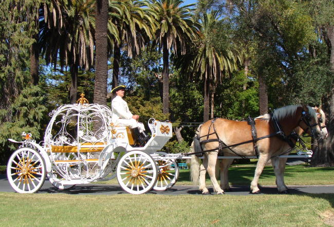 Drawn vehicle fancy car Carriage Fancy Cinderella Horse by