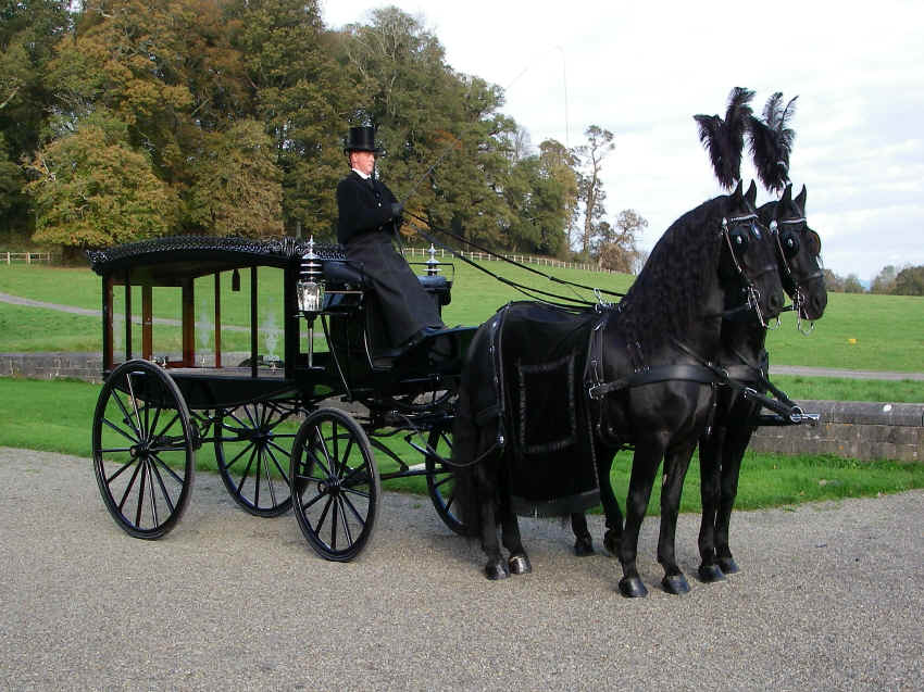 Drawn trolley friesian stallion Roberts vehicles Funeral & Funeral