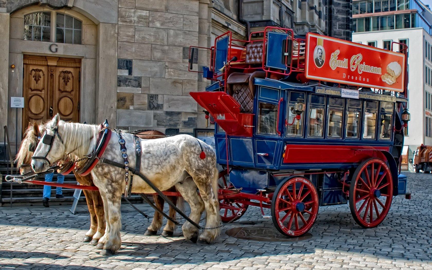 Drawn vehicle vehicle Free HD Drawn Vehicle Horse