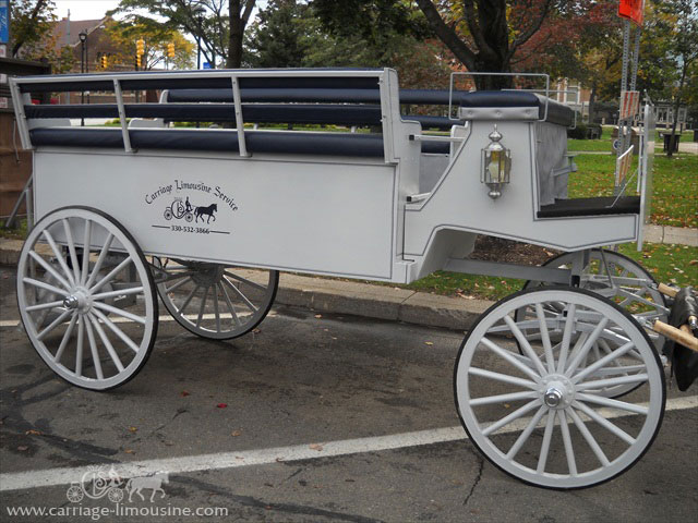 Drawn vehicle vehicle Prom Carriage Limousine  Service