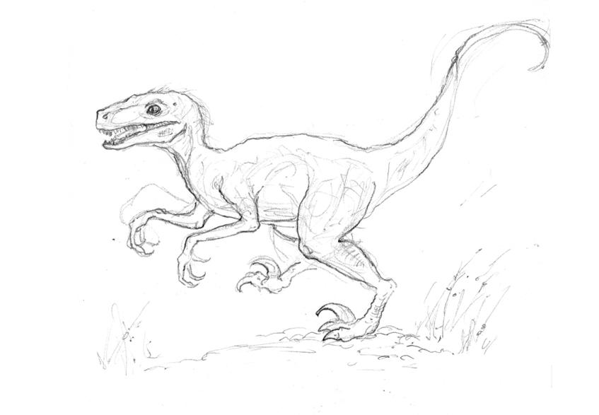 Drawn velociraptor Holliday work Stay tuned Dinosaur