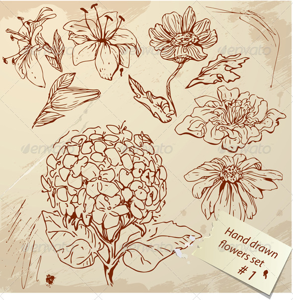 Drawn vintage flower Flowers Flowers of Vintage by