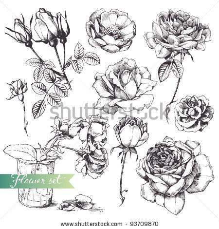 Drawn vintage flower Drawn Shlapak set: highly Shlapak