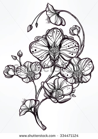 Drawn vintage flower Drawn  stem with floral