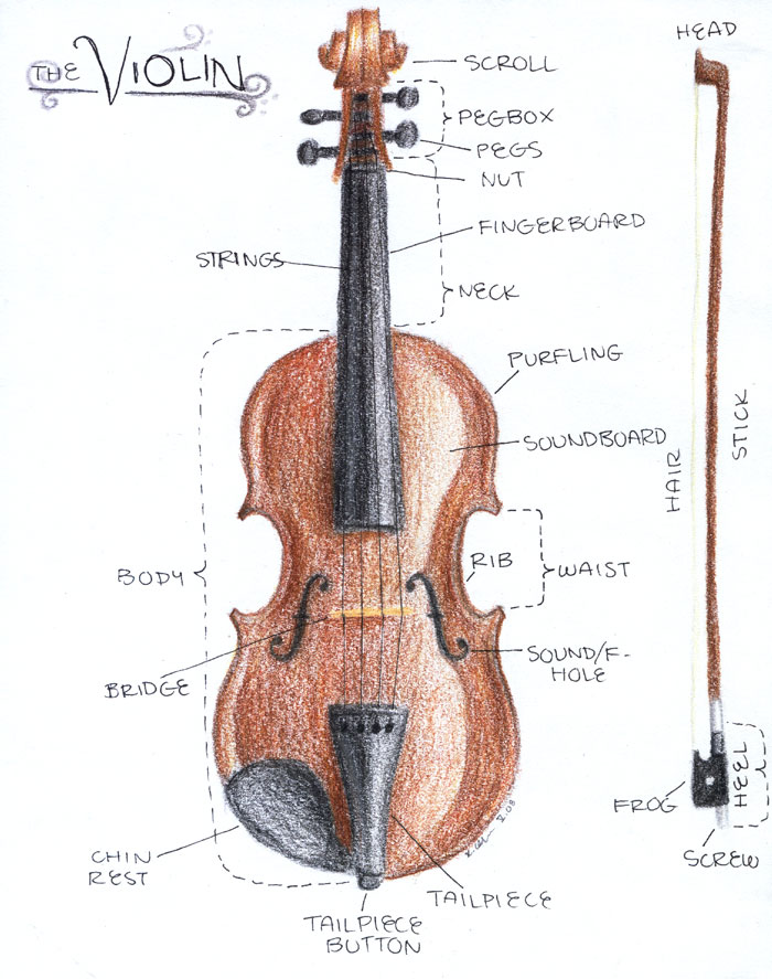 Drawn violinist fiddle My resources thoughts and Teaching