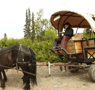 Drawn wagon Horse drawn Tours Lodge Alaska