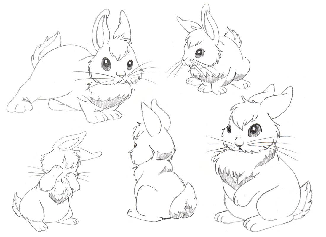 Drawn rabbit baby bunny Jpg jpg 14633  drawing