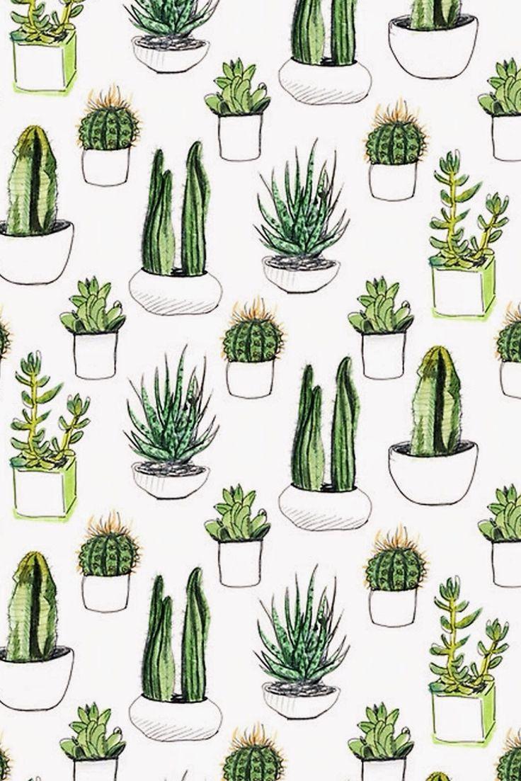 Drawn dwarf wallpaper Draw on Pinterest Cactus
