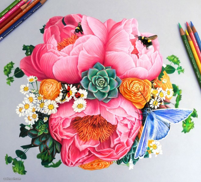 Drawn rose colorful flower Pencil drawing drawing Flower drawing