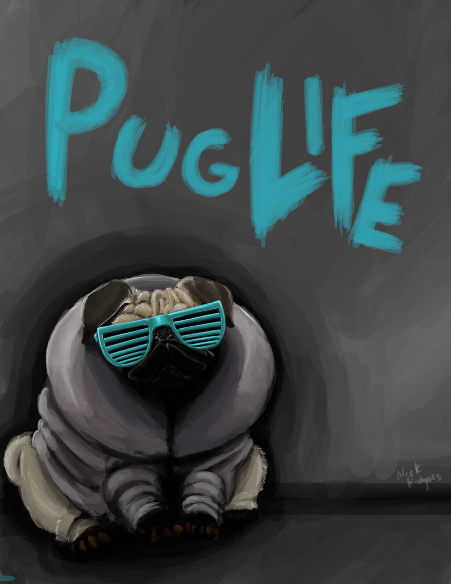 Drawn wallpaper pug Pug Safferion is  by
