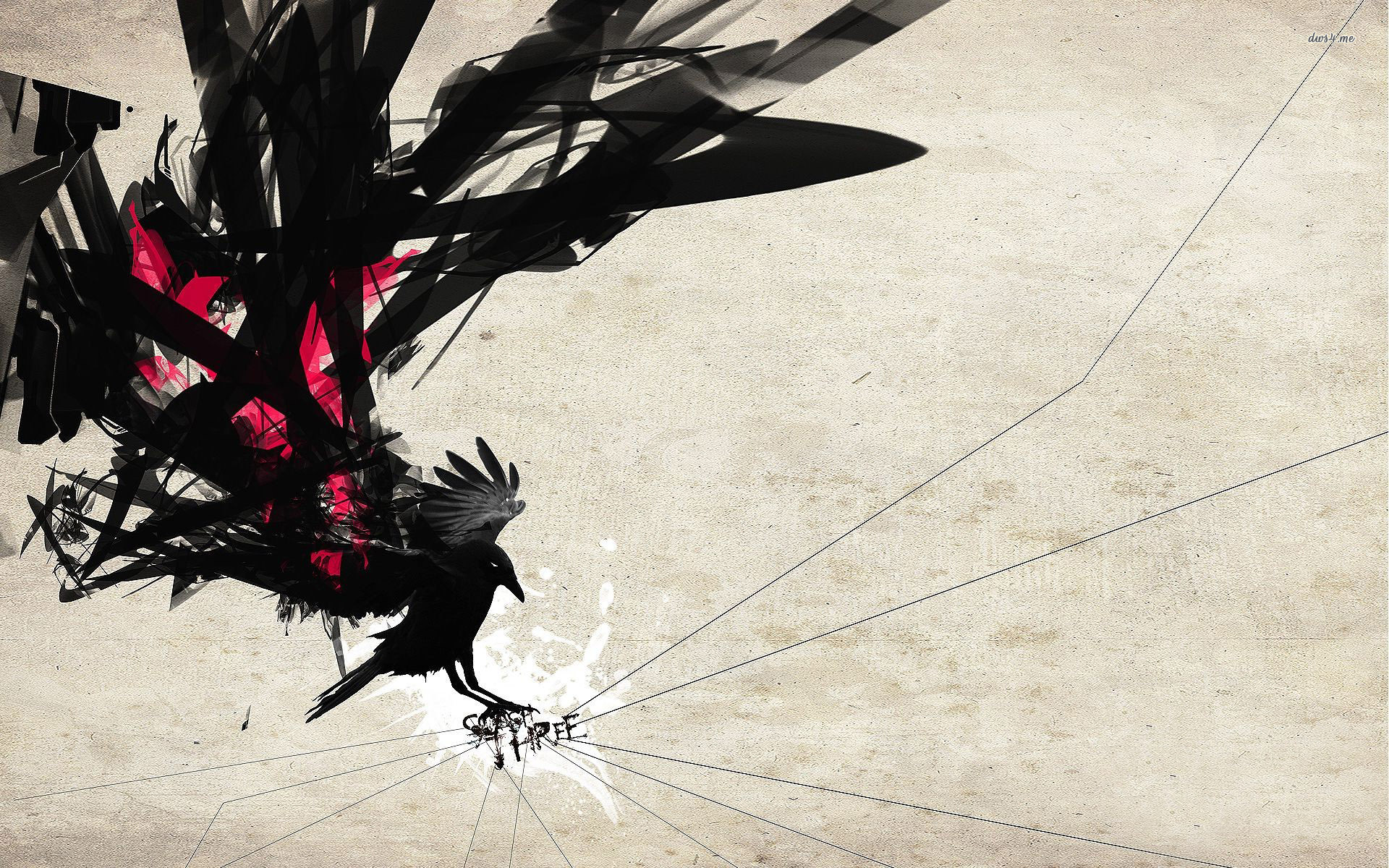 Drawn wallpaper silhouette Crow Drawing Skull  Crow