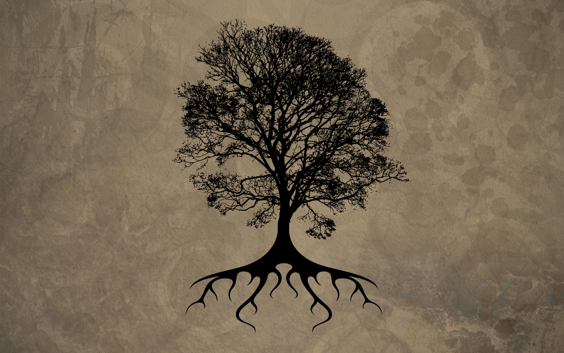 Drawn wallpaper silhouette Tattoo Tree Drawing Oak Oak