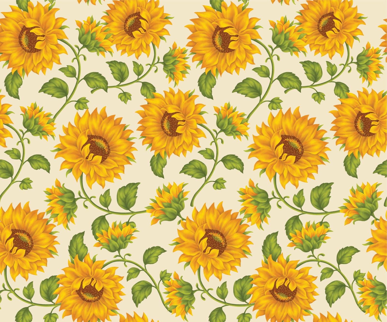 Wallpaper clipart sunflower Sunflower Ivory Background DeviantArt on