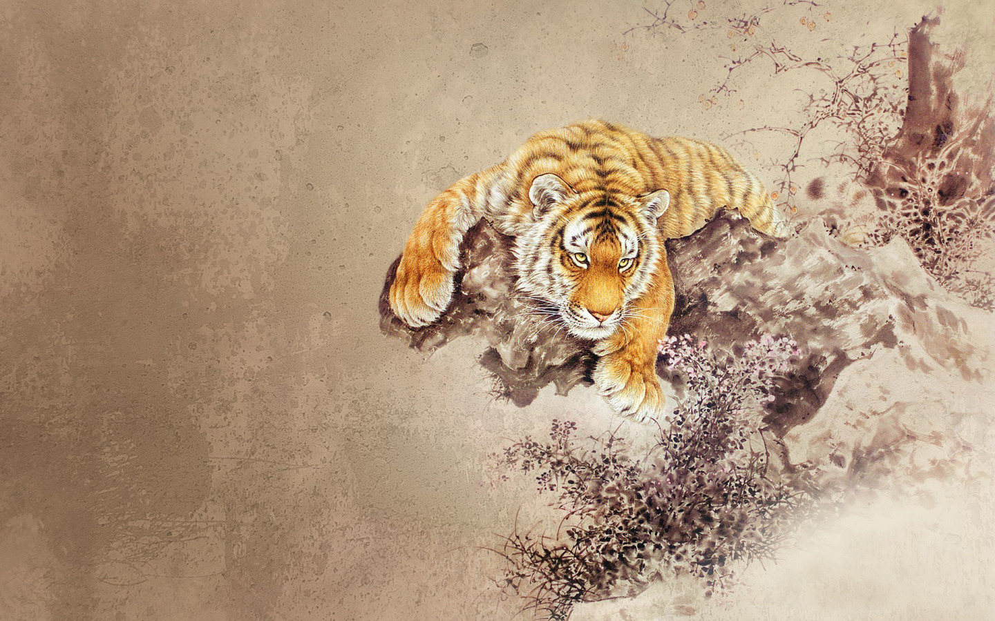 Drawn wallpaper tiger Wide widescreen  900 Wallpapers