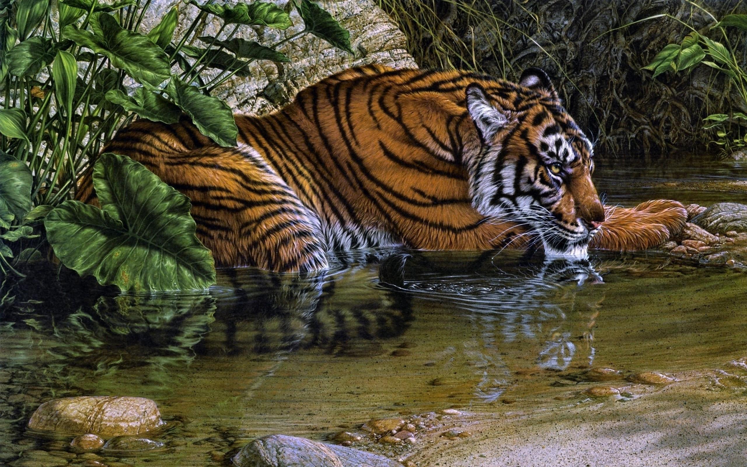 Drawn wallpaper tiger Art 112964 WallpaperUP  Drawing