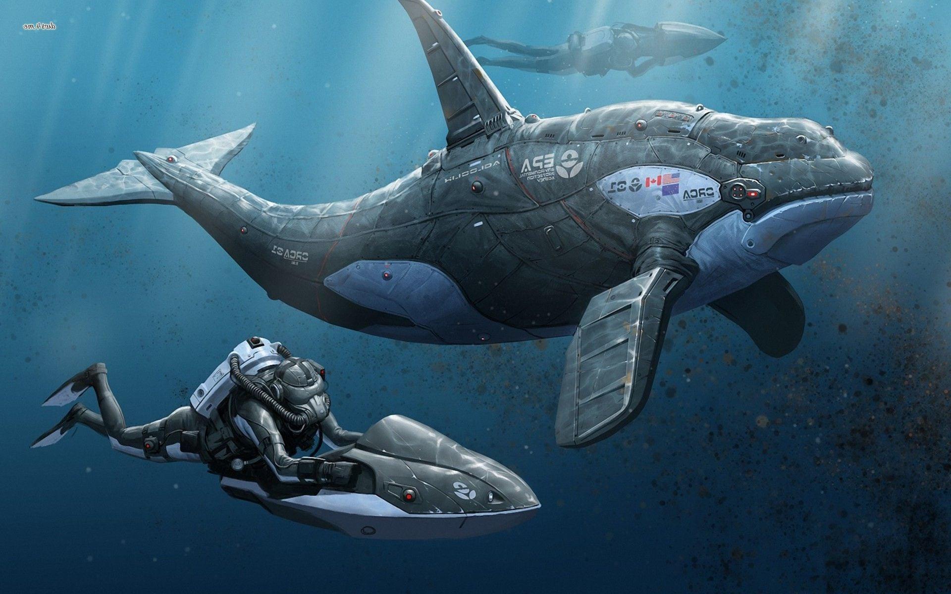 Drawn wallpaper whale Orca HD Whale HD wallpaper