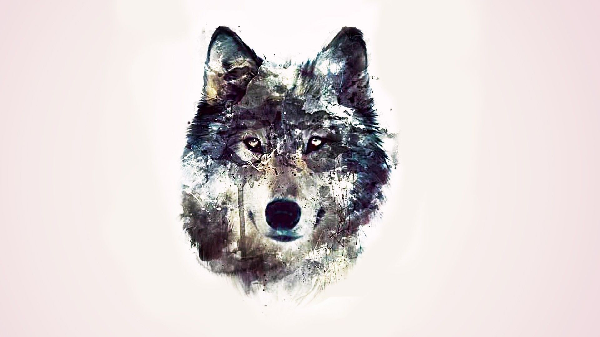 Drawn wallpaper wolf Wide wolf hdwallpapersimage wallpaper hd