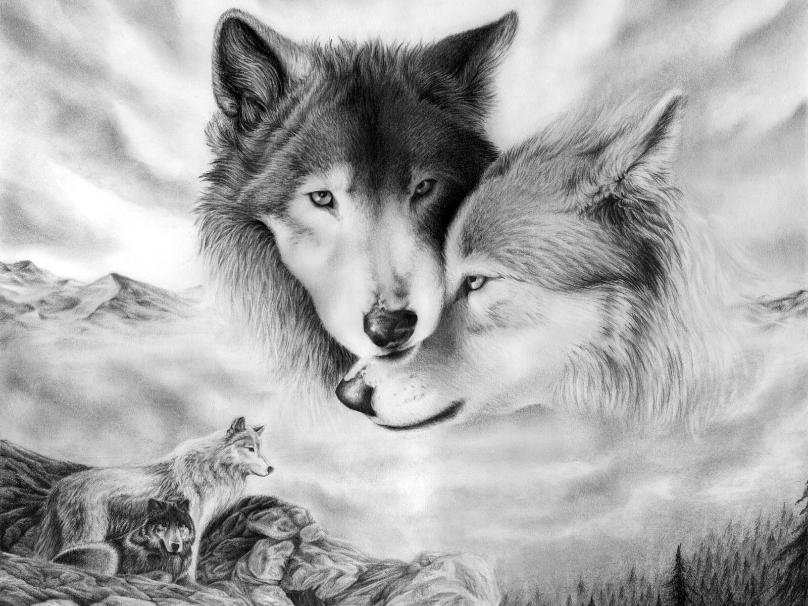 Drawn wallpaper wolf White for 10+ 10+ Inspiration