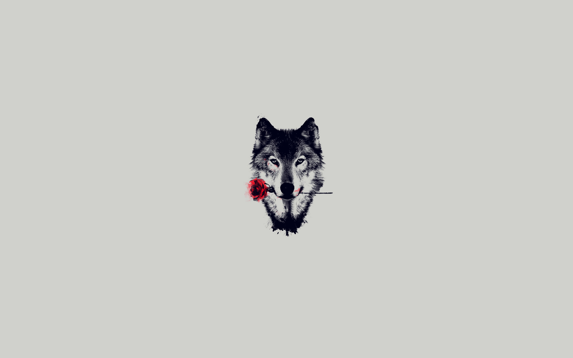 Drawn wallpaper wolf  Desktop Animal with Wolf