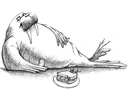 Drawn walrus #12