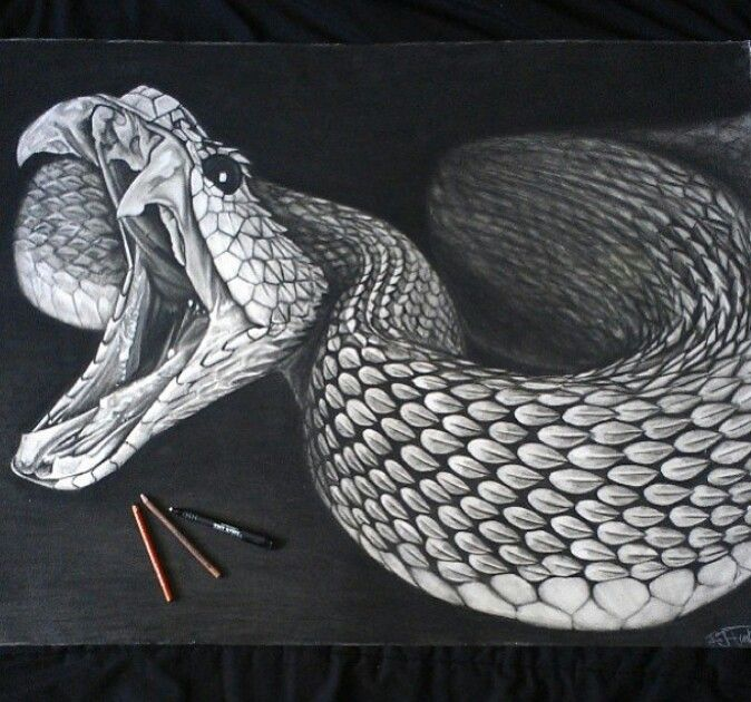 Drawn snake realistic About snake Snake Drawing on