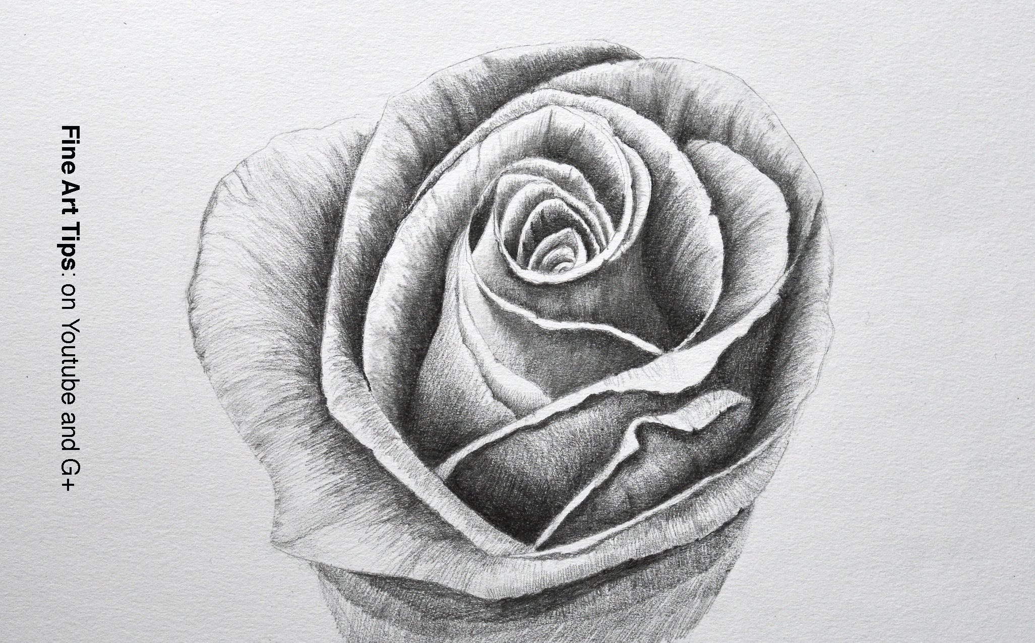 Drawn rose pencil for kid Unsubscribe Tips Flowers: Draw a