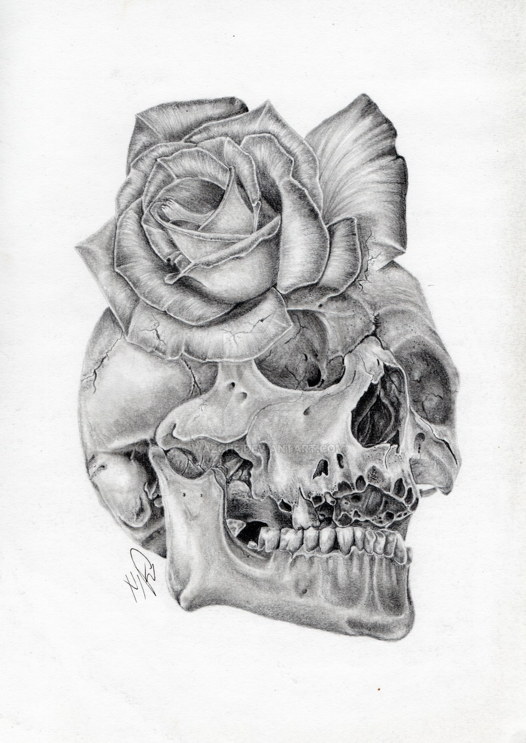 Drawn watch skull  Skull by pencil drawing