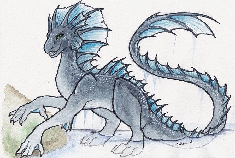 Drawn water dragon The Dragon shiverz DeviantArt on