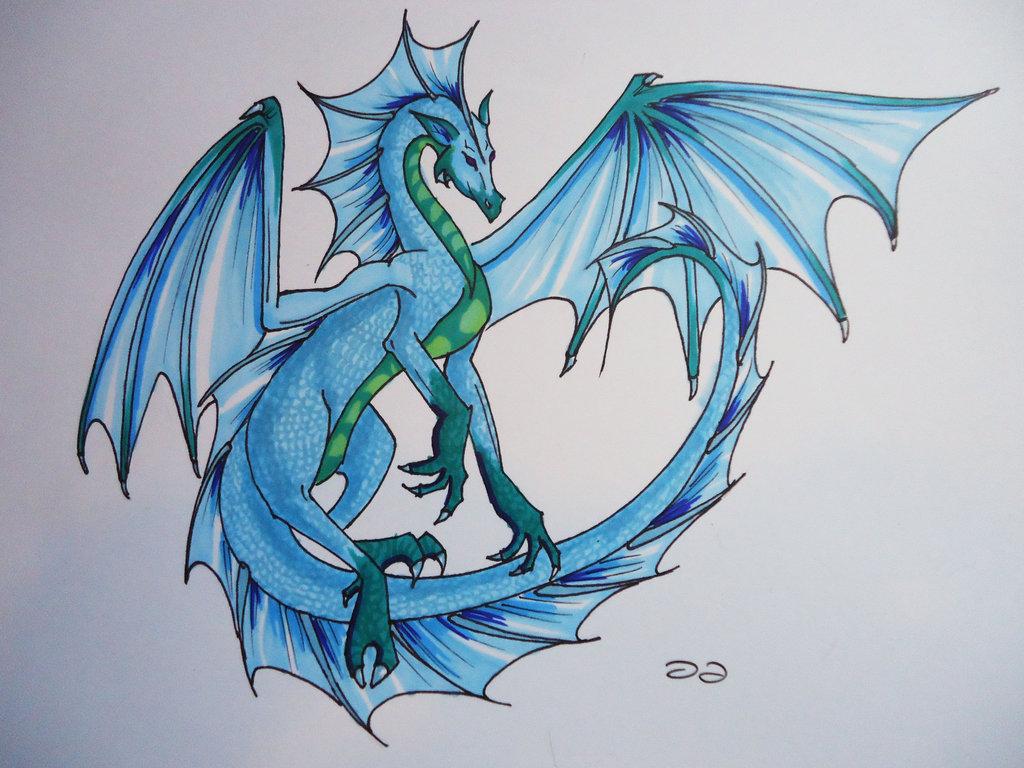 Drawn water dragon The Dragon on # the