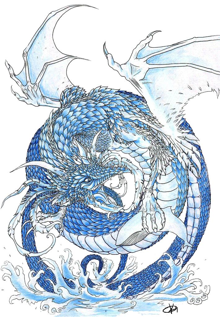 Drawn water dragon Dragon Dragon ~cescavarium deviantART on